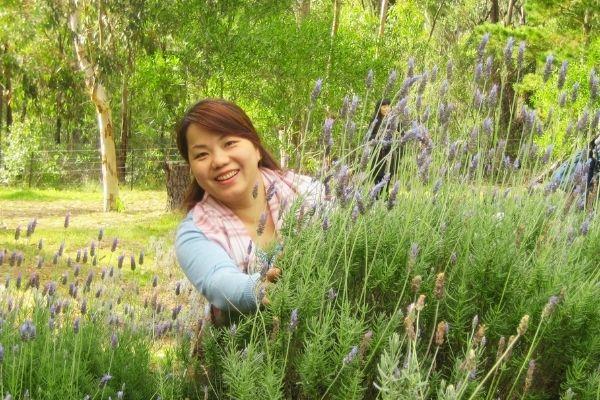 Lavender Farm Eco Tour 2014 - Nurtured Tours (2)