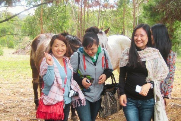 Lavender Farm Eco Tour 2014 - Nurtured Tours (3)